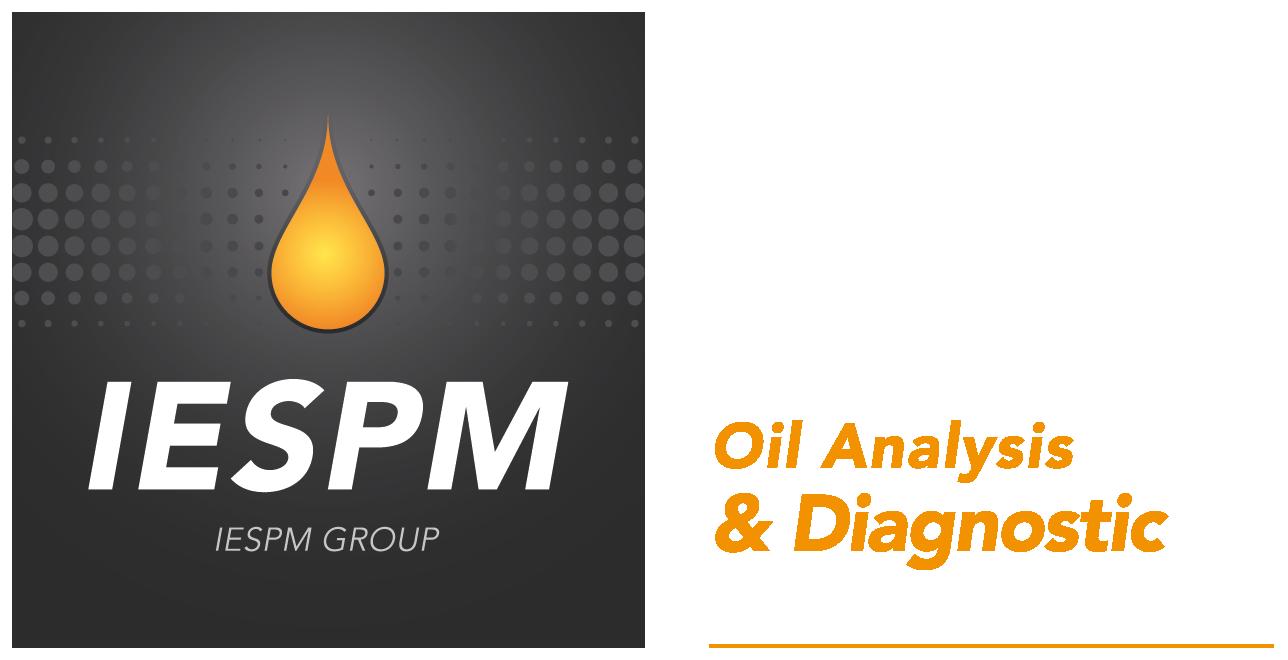 Logo IESPM